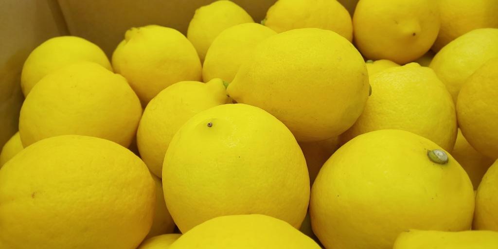 コロナに警戒 食中毒にも警戒  わたくしはレモンで爽快...