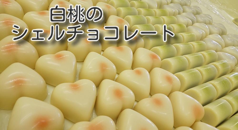 お菓子作りが好きなシェフの【夏の季節限定】2種類のお菓子!チョコもあります...