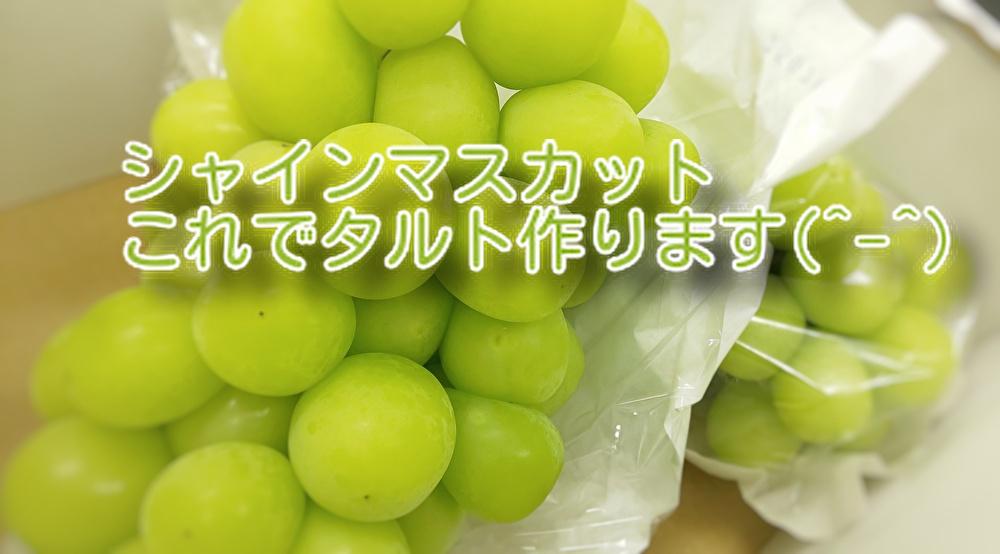 【葡萄】の美味しい季節がやってきました。あなたは皮をとって食べますか?...