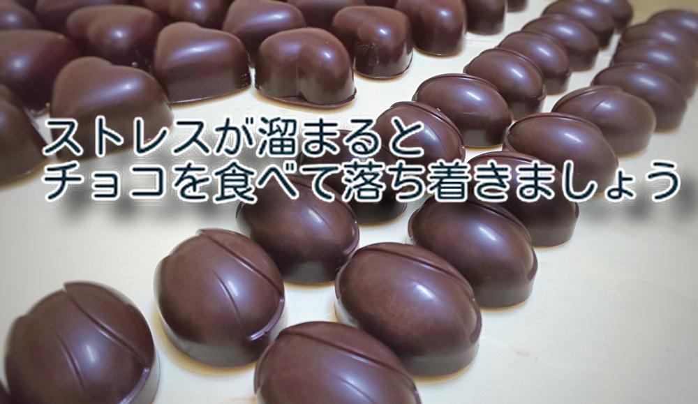 どんどん増えるストレスには【カカオポリフェノール】が効果的!チョコレートを噛みしめて耐えましょう...