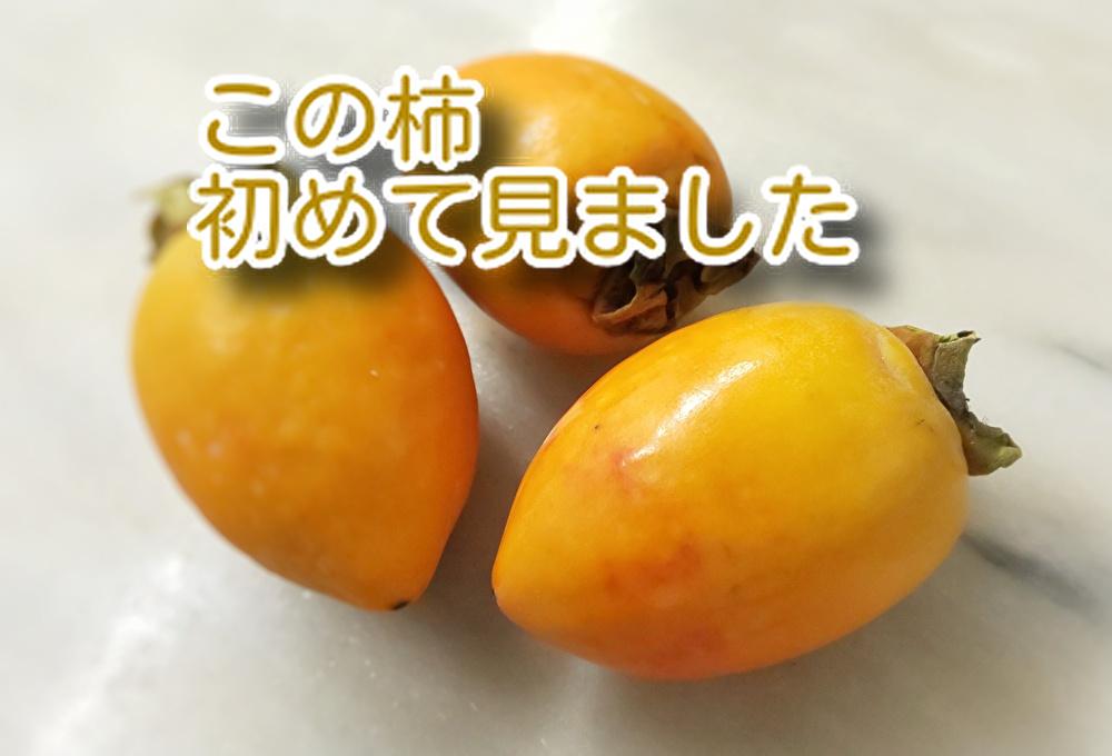【柿の季節】ですね。柿を食べすぎるとお腹が緩くなると言われてました...